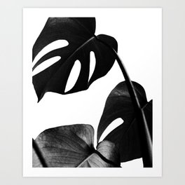 Palm Leaf Art Print