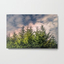 Cloudy Day in the Pine Forest Metal Print