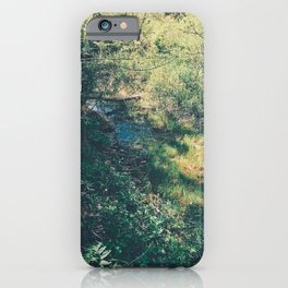 Hiking trail iPhone Case