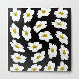 White flowers on a black background #Society6 #buyart Metal Print