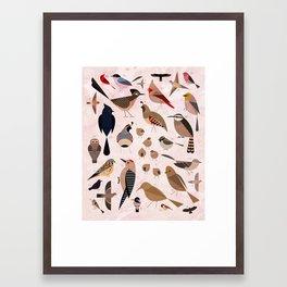 Birds of the Sonoran Desert Framed Art Print