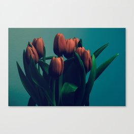 Tulips of Life Canvas Print