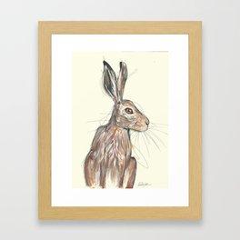 British Hare Framed Art Print
