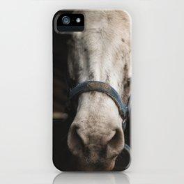 horse by Javier Esteban iPhone Case