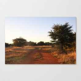 Red soil Canvas Print