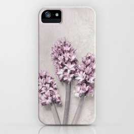 Beautiful Pink Hyacinths iPhone Case