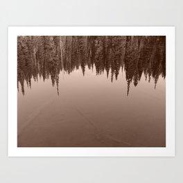 Pine Trees Reflected in an Alpine Lake Art Print