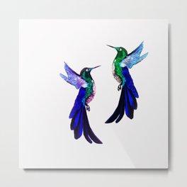 Hummingbird dance 2 Metal Print