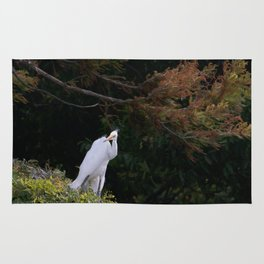 Great White Egret with Autumn Colors Rug