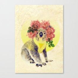 Australian Icon: The Koala Canvas Print