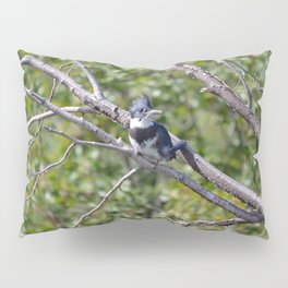 Two 4 One - Belted Kingfisher Pillow Sham