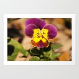 April Showers Bring May Flowers Art Print