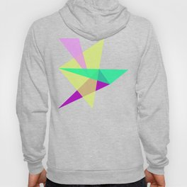 Triangles No19 Hoody