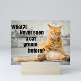 Never Seen a Cat Groom? Mini Art Print