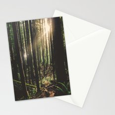 Sun in the Rainforest Stationery Cards