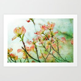 Thoughts of Spring Art Print