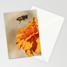 Coming in to land Stationery Cards