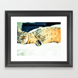 Кошка Framed Art Print