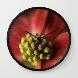 Dogwood Bloom Wall Clock
