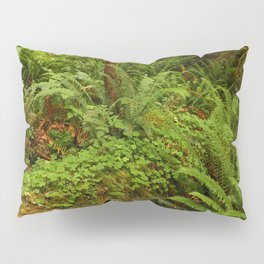 In The Cold Rainforest Pillow Sham