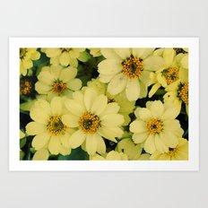 Flower series 04 Art Print