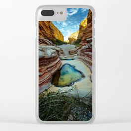 Ernst Canyon, Big Bend, Texas Clear iPhone Case