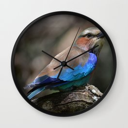 Lilac Breasted Roller Wall Clock