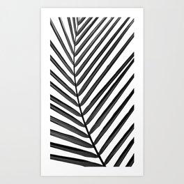 Tropical Darkroom #165 Art Print