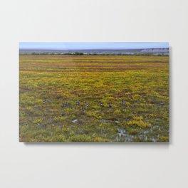 Ducks on the Tundra Metal Print