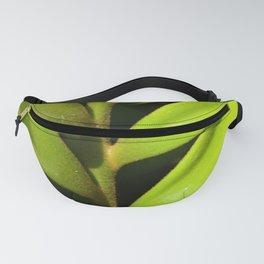 Vegetable balance - Green design Fanny Pack