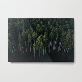 Aerial Photograph of a pine forest in Germany - Landscape Photography Metal Print