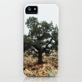 Fog Land iPhone Case
