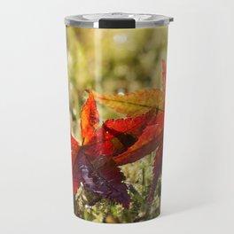 Indian Summer II Red marple leaves in wet grass at backlight Travel Mug