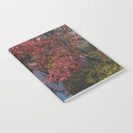 FliFli Notebook