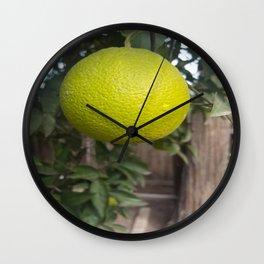 Ripening Fruit Wall Clock