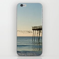 Oceanic Pier & Birds iPhone & iPod Skin