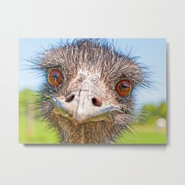 Funny emu Metal Print