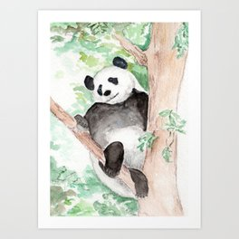 Panda, Hanging Out Art Print