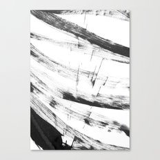 b+w strokes 3 Canvas Print