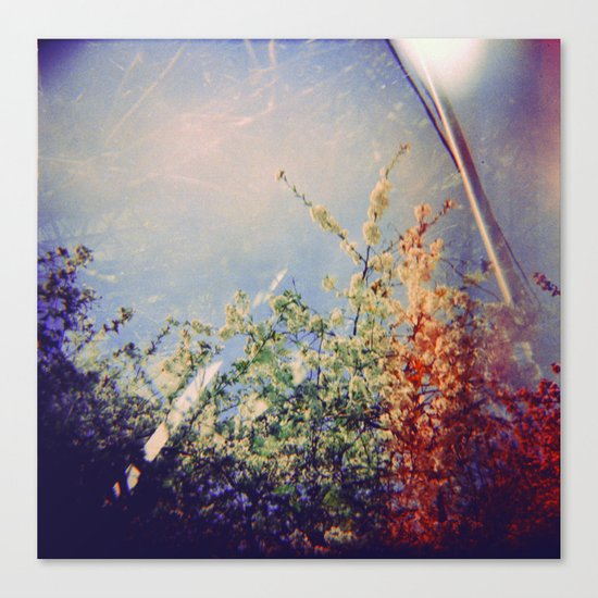 Holga Flowers IV Canvas Print
