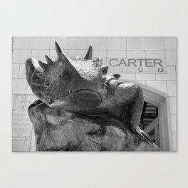 TCU Superfrog #6 Canvas Print