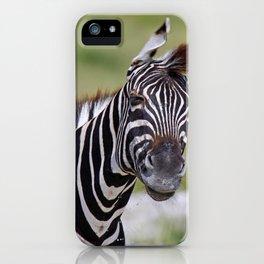 Shaking Zebra, Africa wildlife iPhone Case