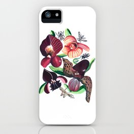 Orchid Cafe iPhone Case
