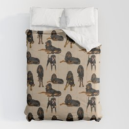 Black and Tan Coonhound on Tan Comforters