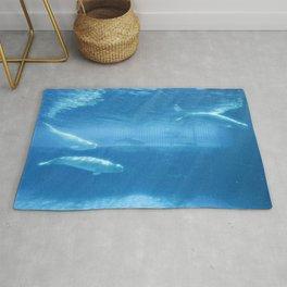 Ocean Blue Beluga Pairs Version 2 Rug