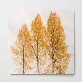 Aspen Trees #decor #society6 #buyart Metal Print
