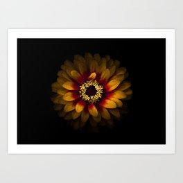 Backyard Flowers 69 Color Version Art Print