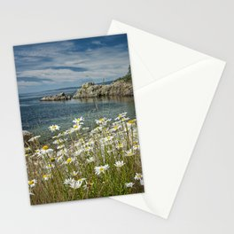 Daisies on Maine's Acadia Shoreline Stationery Cards