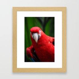 Red Sexy Framed Art Print