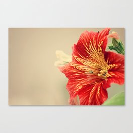 On the Edge of Goodbye Canvas Print